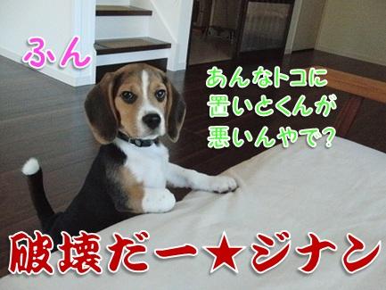 20110930_09.jpg