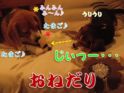 20111005_02.jpg