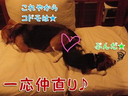 20111005_09.jpg
