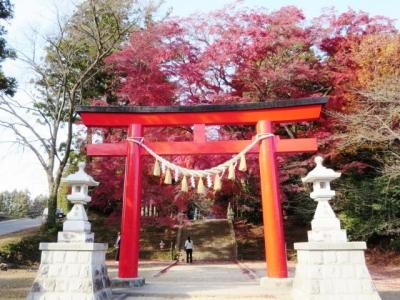 紅葉の神社2014