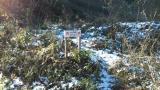 林道のショートカット