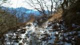 雪の残っているトレイル