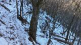 北斜面の残雪