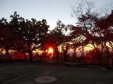 高尾山頂で見る日の出