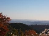 東に東京スカイツリーを望む