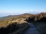 背後の富士山