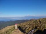 達磨山の頂上からの絶景