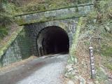 旧天城トンネル前を通過