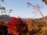 頂上だけが見える富士山
