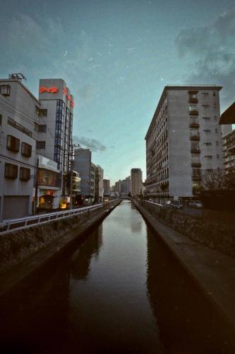 PICT0009_20120206203950.jpg