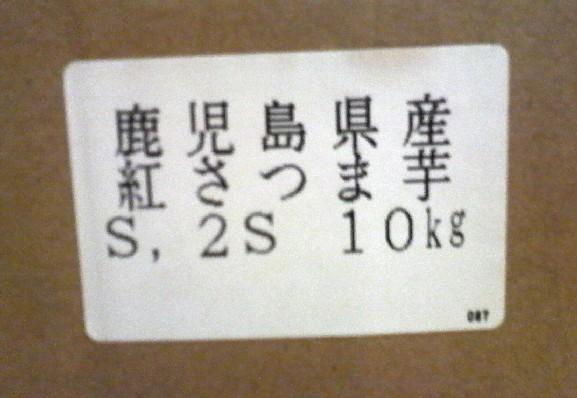 P1010662.jpg