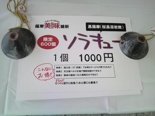 P1010001_3.jpg