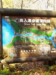 奥入瀬渓流 (1-2)_600