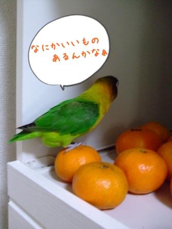 020_20111209134053.jpg