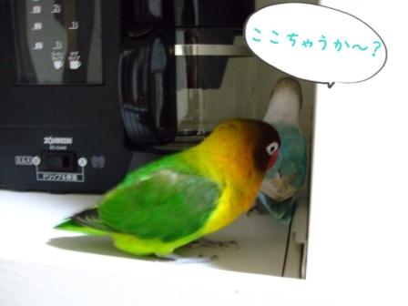 023_20111209134137.jpg