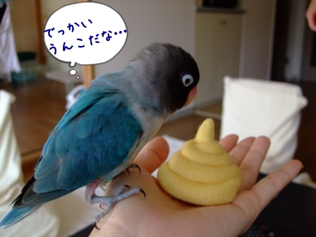 037_20111124102704.jpg