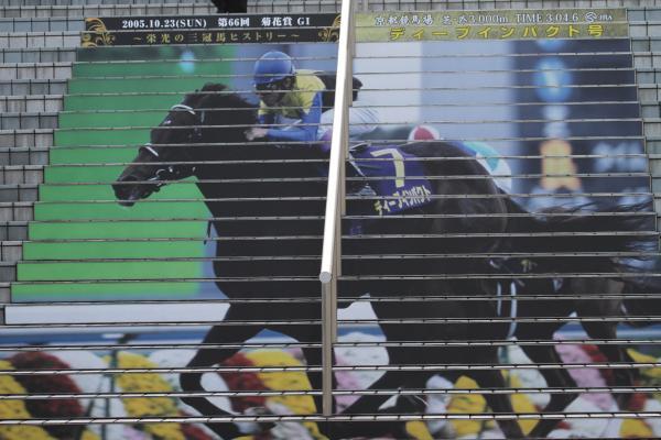 京都競馬場2