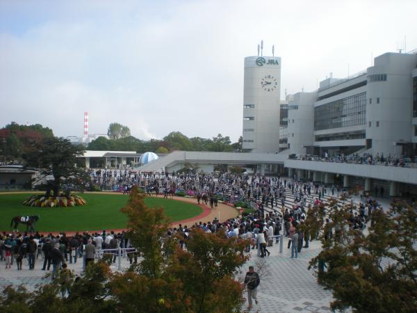 京都競馬場7