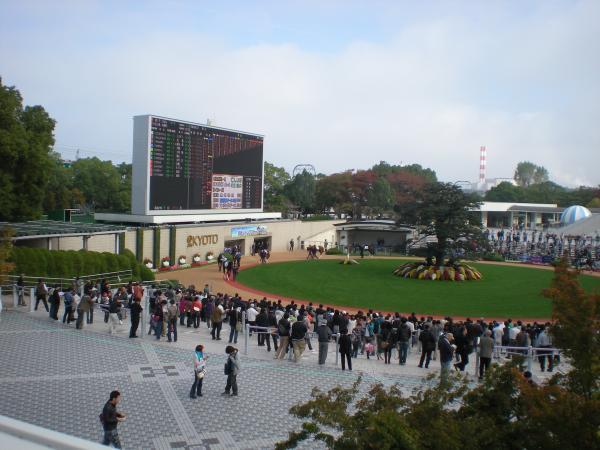 京都競馬場8
