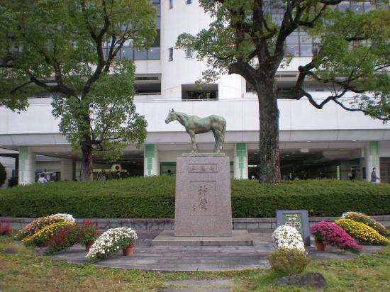 京都競馬場9