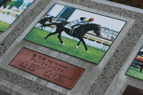 東京競馬場ディープ