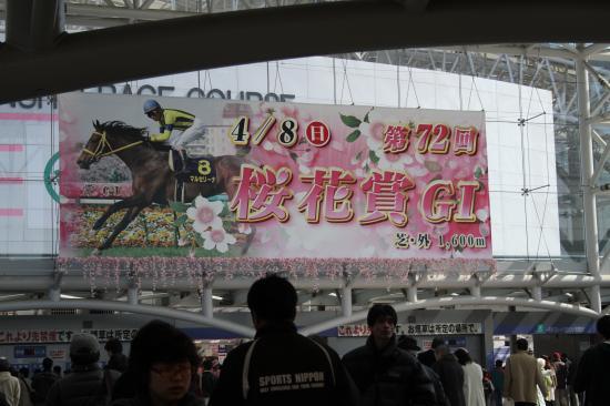 阪神正門桜花賞