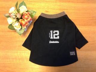 フチル長袖tシャツ20130104