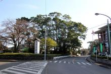 寒川神社入口