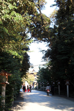 三の鳥居・太鼓橋 から神門へ抜ける道のり