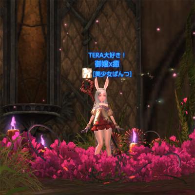 TERA_ScreenShot_20120125_015841_400x400.jpg