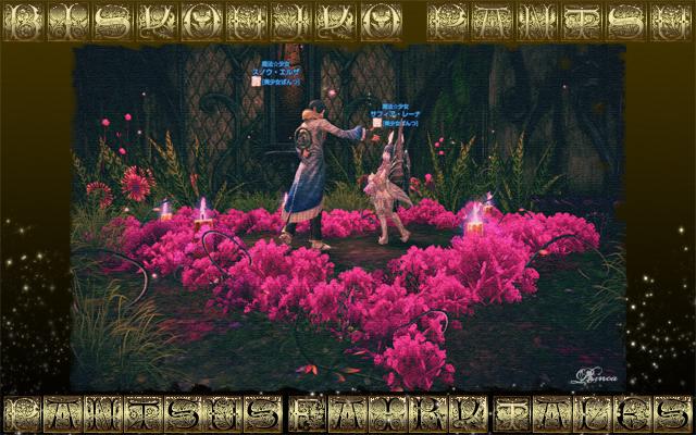 TERA_ScreenShot_20120302_090214_640.jpg