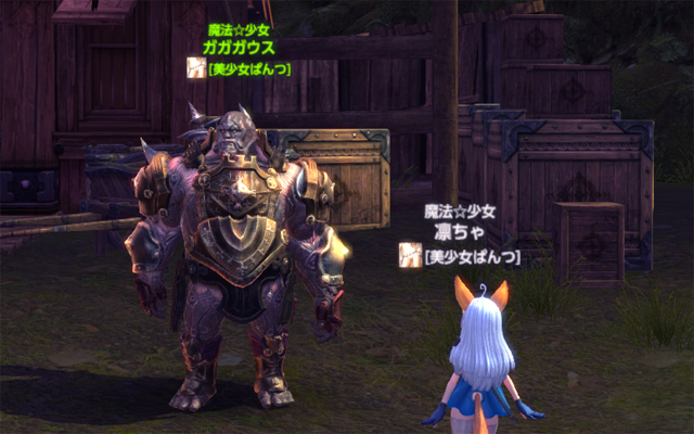 TERA_ScreenShot_20120302_135416_640_cut.jpg