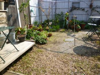 2012_4_12の庭