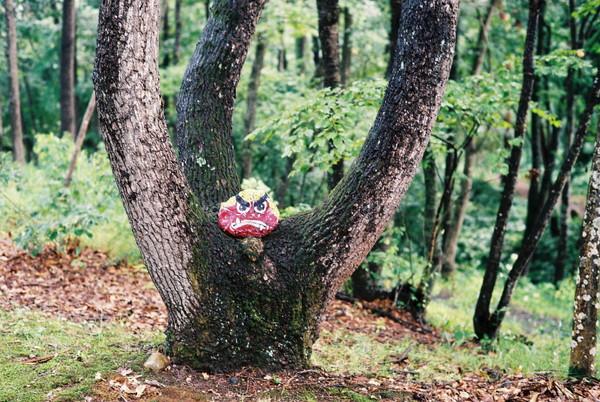 万葉の森4