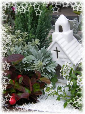 クリスマス寄せ植えアップ