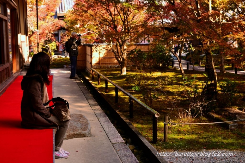 18.2013.11.21圓光寺十牛の庭