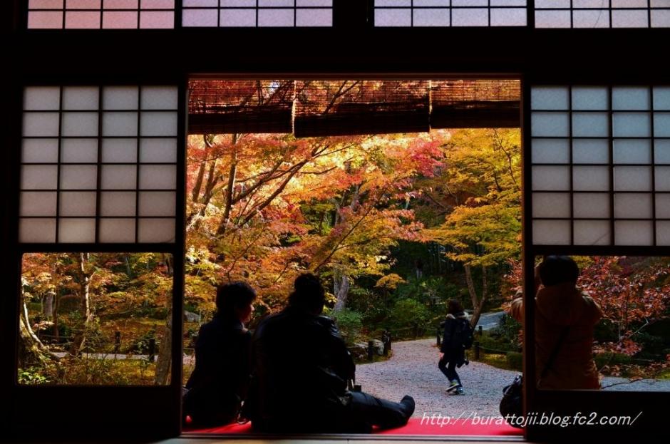 16.2013.11.21圓光寺十牛の庭