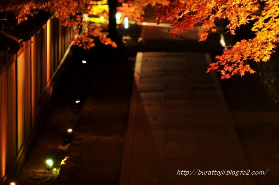 11.2013.11.22永源寺ライトアップ