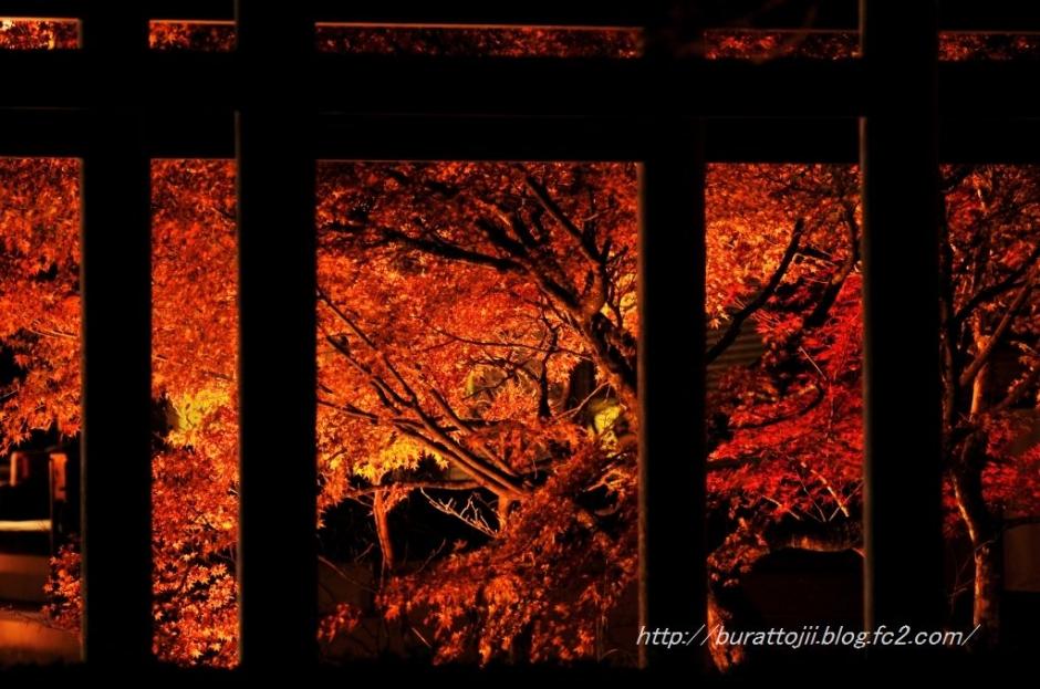 9.2013.11.22永源寺ライトアップ