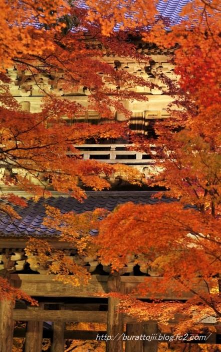 3.2013.11.22永源寺ライトアップ