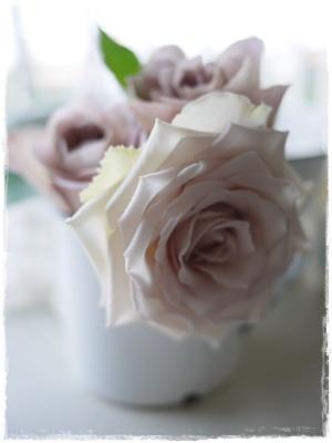 anflower1.jpg