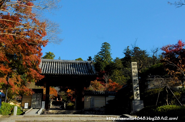 1122kanshinji-1.jpg