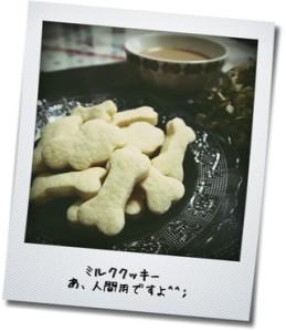 ミルククッキー
