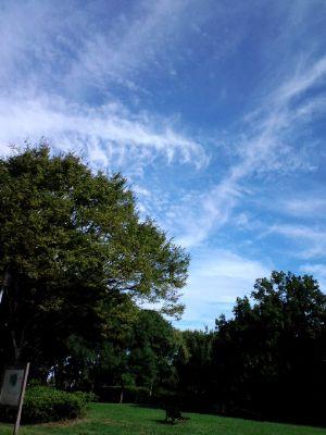 大仙公園20110915_400