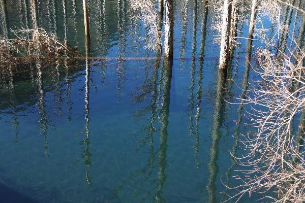 桃沢の池-1