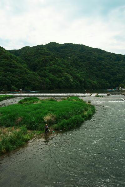 IMG_1801.jpg大堰川-3.jpg