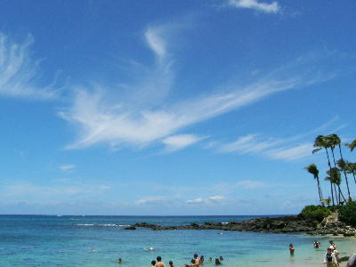 P8060025.jpgラニアケアビーチ-25.jpg
