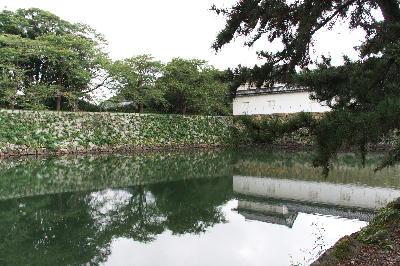 IMG_0470.jpg彦根城-470.jpg