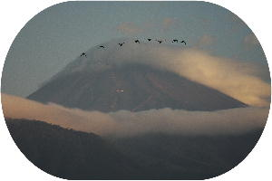 IMG_0897.jpg 10.5 の富士山 鴈-3.jpg