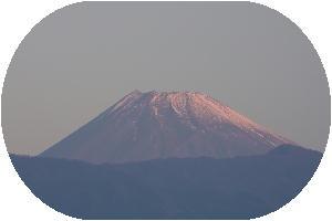 IMG_2173.jpg 11.25.jpg今朝の富士山-2.jpg